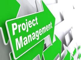 پایان نامه در مورد مدیریت پروژه